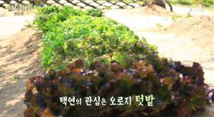 [tvN] TMAD E04.avi_20150608_213910.009