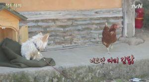 [tvN] TMAD E04.avi_20150608_222202.689